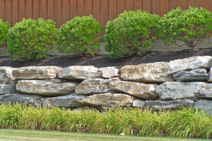 Why You Should Hire a Landscape Service